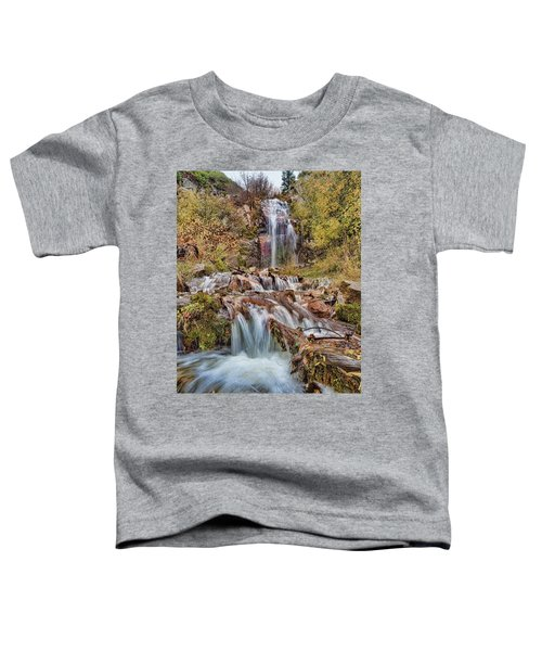 Sierra Waterfall Toddler T-Shirt