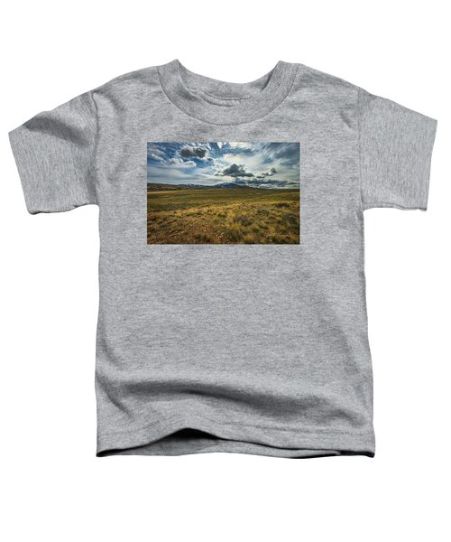 Silver Lining Toddler T-Shirt