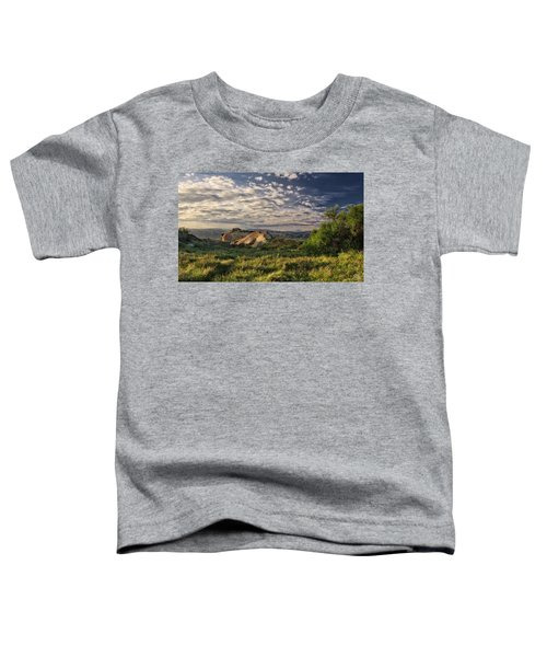 Simi Valley Overlook Toddler T-Shirt
