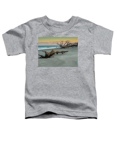 Sunset On Jekyll Island Toddler T-Shirt