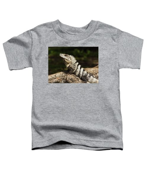Sir Iguana Mexican Art By Kaylyn Franks Toddler T-Shirt