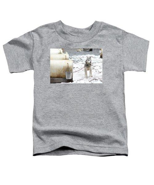 Grant Toddler T-Shirt