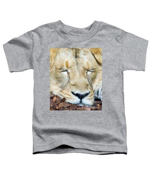 Sleeping Lion Toddler T-Shirt