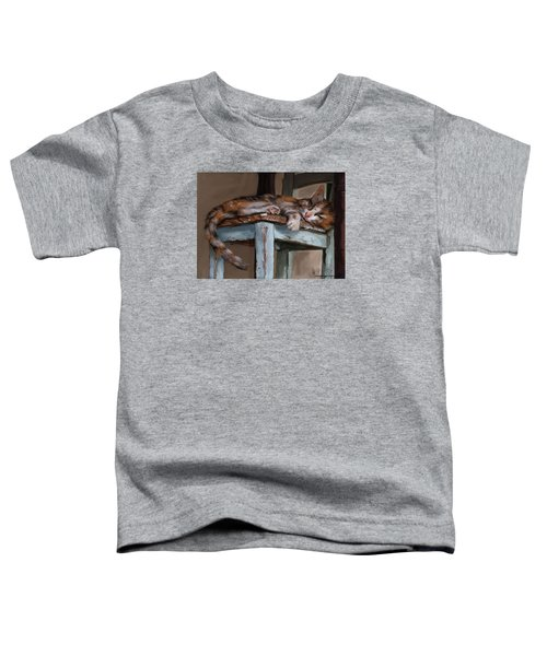 Sleepting Cat Toddler T-Shirt