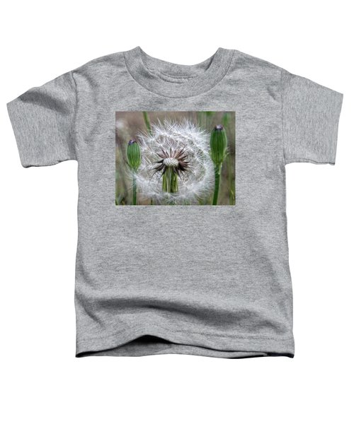 Slight Breeze Toddler T-Shirt