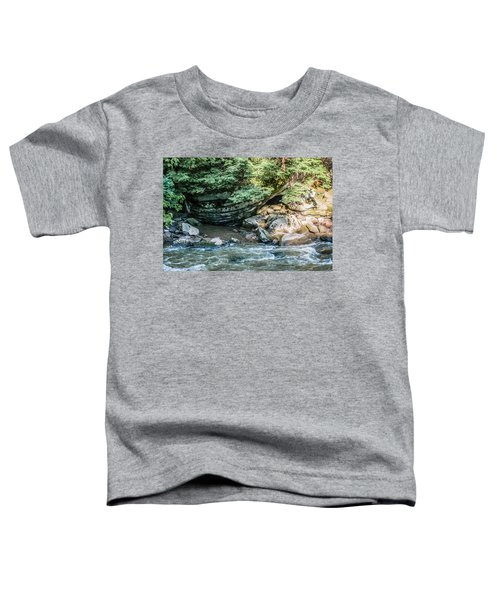 Slippery Rock Gorge - 1895 Toddler T-Shirt