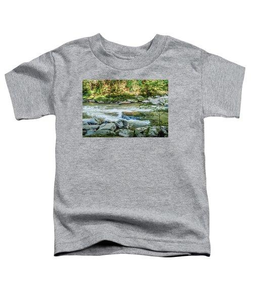 Slippery Rock Gorge - 1914 Toddler T-Shirt