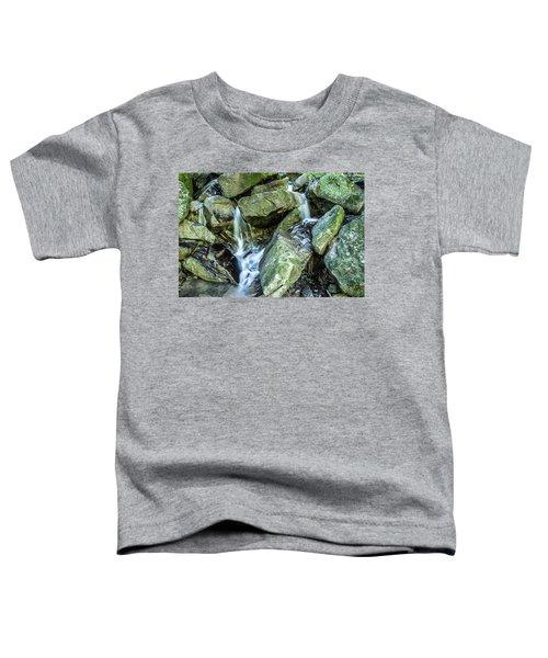 Slippery Rock Gorge - 1929 Toddler T-Shirt