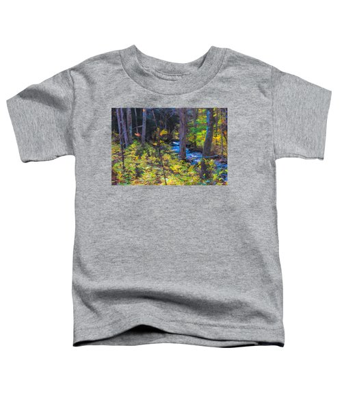 Small Stream Through Autumn Woods Toddler T-Shirt