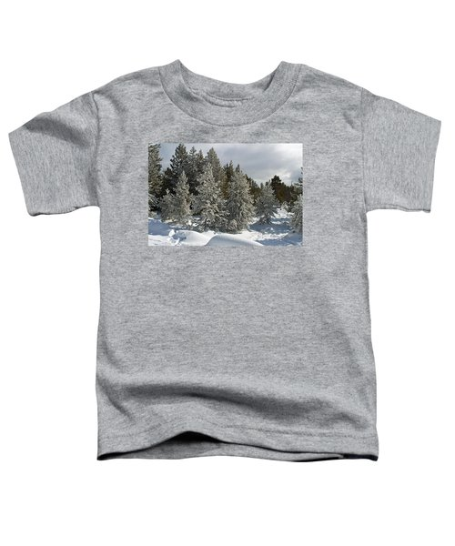 Snow And Ice Covered Evergreens At Sunset Lake  Toddler T-Shirt