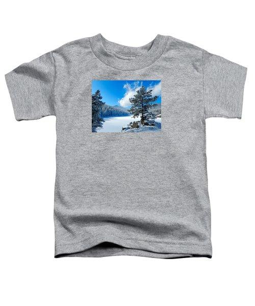 Snow At Beaver Brook Toddler T-Shirt