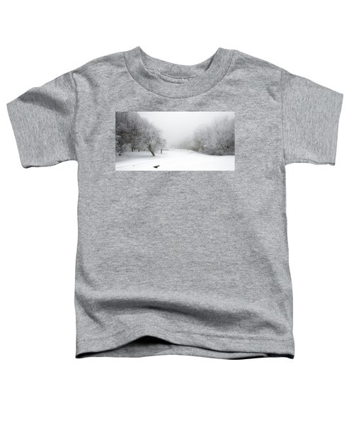 Snow Bound 2014 Toddler T-Shirt