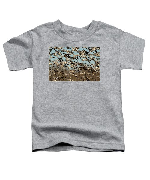 Snow Geese Toddler T-Shirt