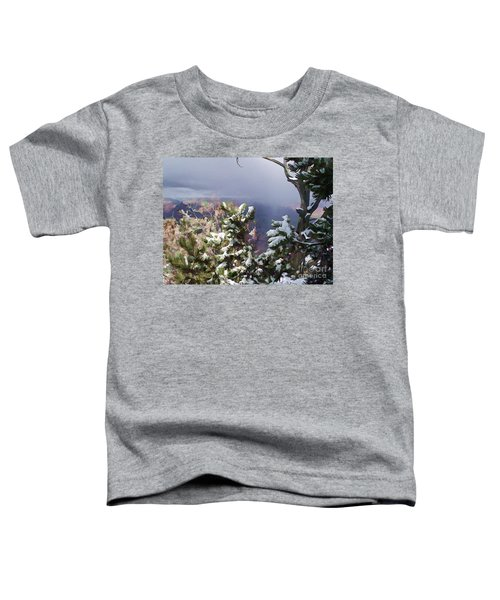 Snow In The Canyon Toddler T-Shirt