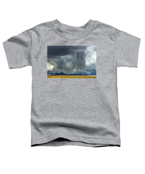Snow On The Rockies Toddler T-Shirt
