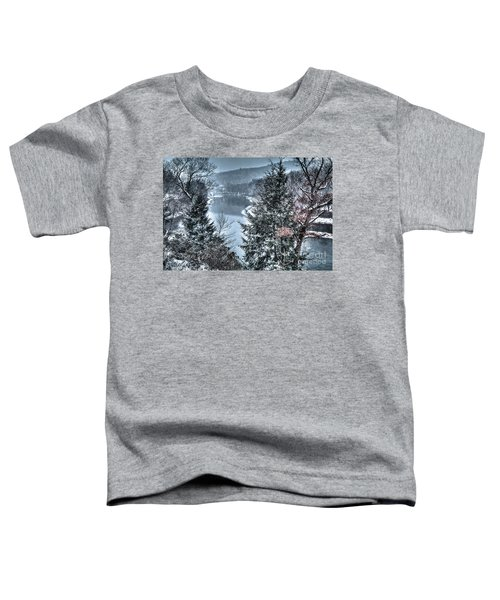 Snow Squall Toddler T-Shirt