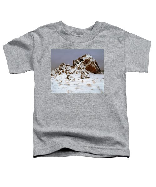 Snow Stones Toddler T-Shirt