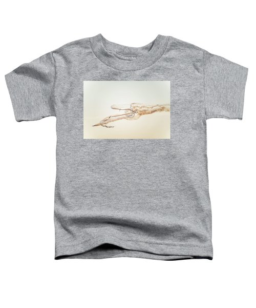 Snowbirds Over English Bay Toddler T-Shirt