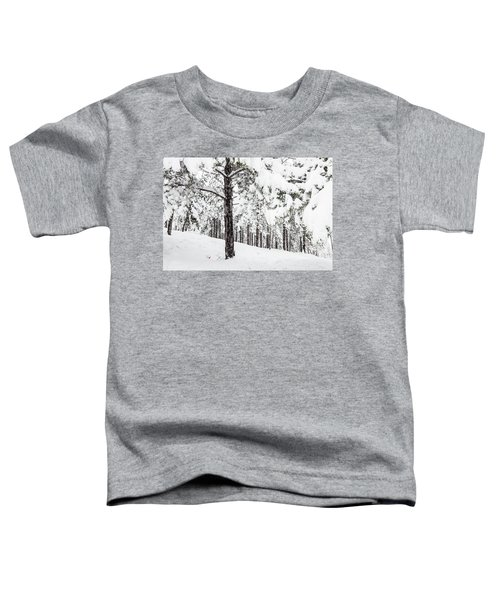Snowy-4 Toddler T-Shirt