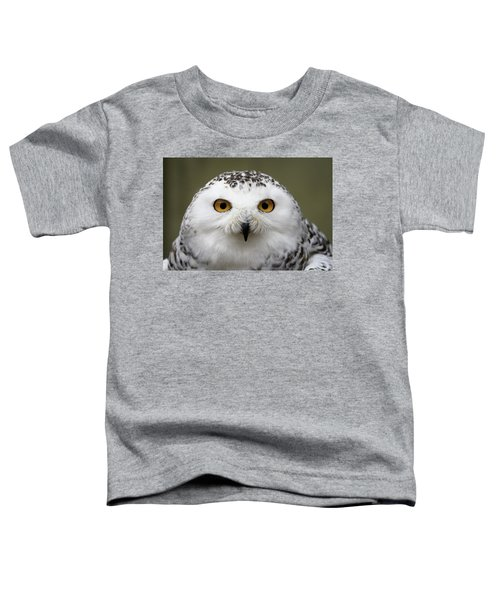 Snowy Eyes Toddler T-Shirt