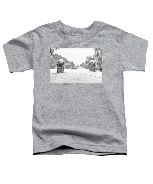 Snowy Gates Of Chisolm Island Toddler T-Shirt