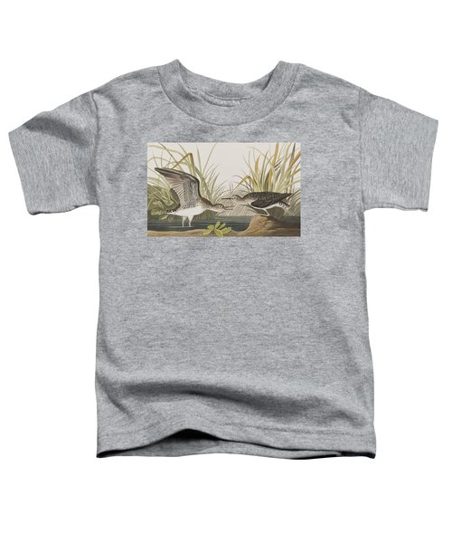Solitary Sandpiper Toddler T-Shirt by John James Audubon