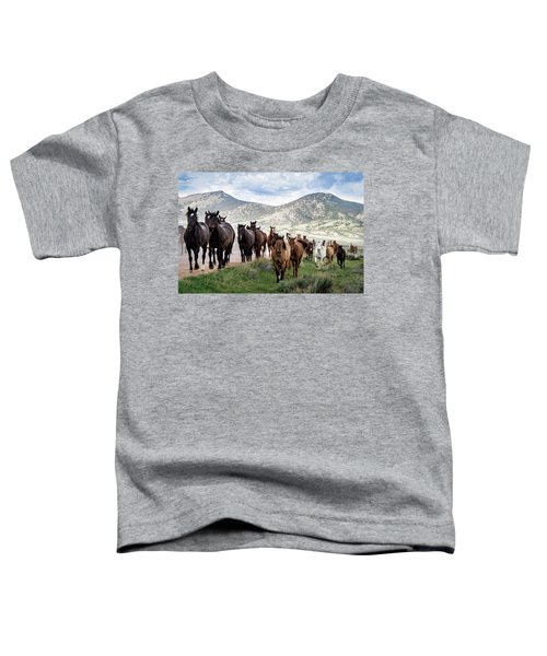 Sombrero Ranch Horse Drive, An Annual Event In Maybell, Colorado Toddler T-Shirt