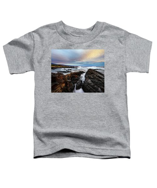 South Swell Toddler T-Shirt