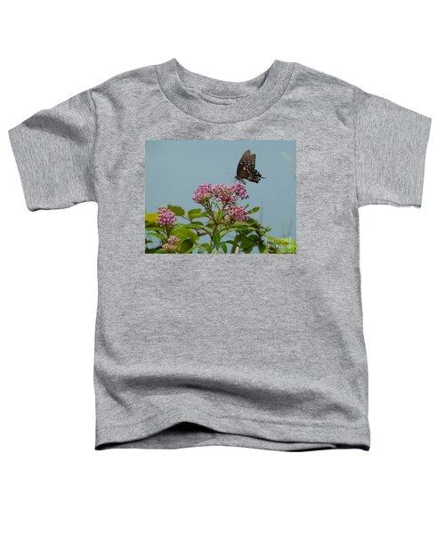 Spicebush Butterfly Toddler T-Shirt