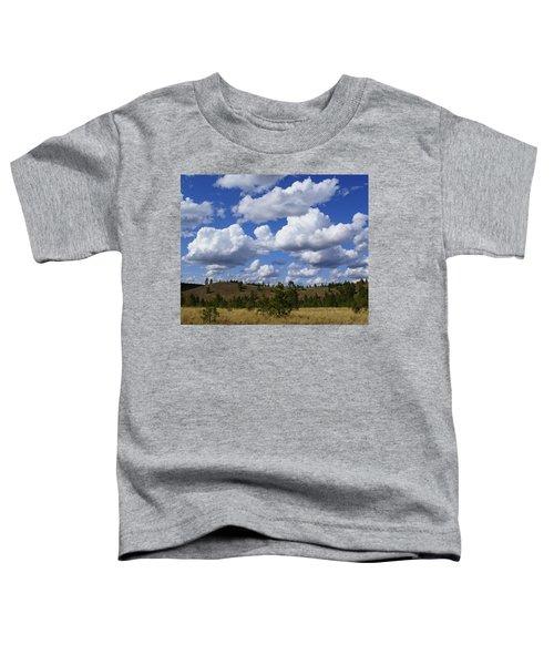 Spokane Cloudscape Toddler T-Shirt