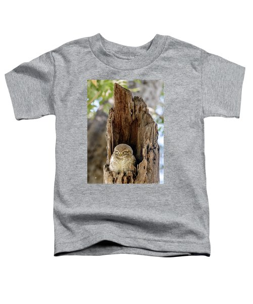 Spotted Owlet Toddler T-Shirt