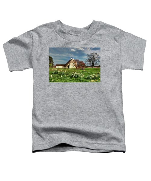 Spring At The Paine House Toddler T-Shirt