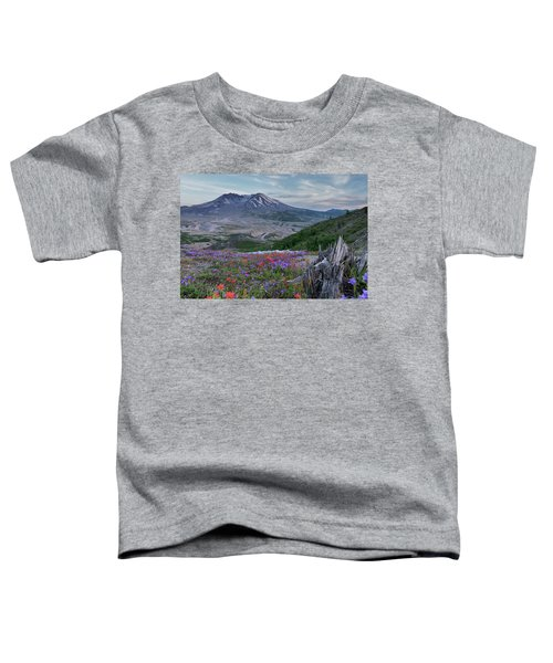 Spring Bloom Mt St Helens Toddler T-Shirt