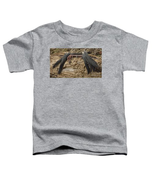 Spring Feathers Toddler T-Shirt