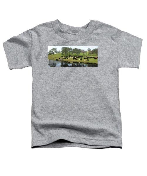 Spring Gather Toddler T-Shirt