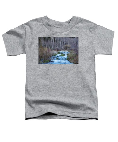 Spring Melt Off Flowing Down From Bonanza Toddler T-Shirt by James BO Insogna