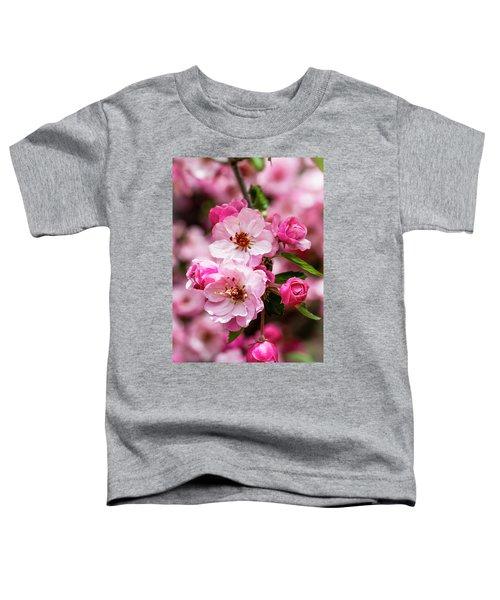 Spring Pink Toddler T-Shirt