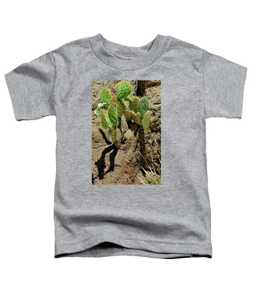 Spring Refreshment Toddler T-Shirt