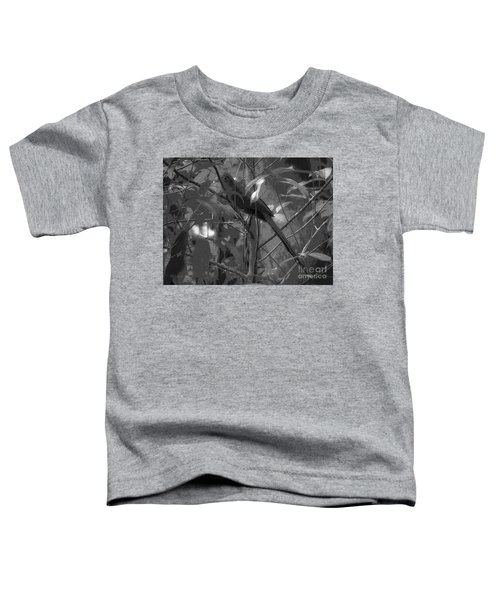 Squirrel Cuckoo  Toddler T-Shirt