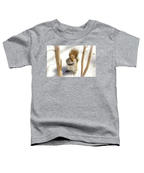Toddler T-Shirt featuring the photograph Squirrel In Snow by Alison Frank