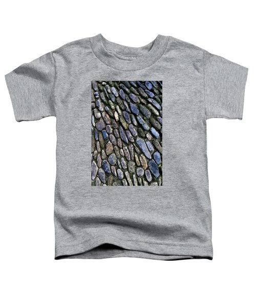 St Michael's Path Toddler T-Shirt