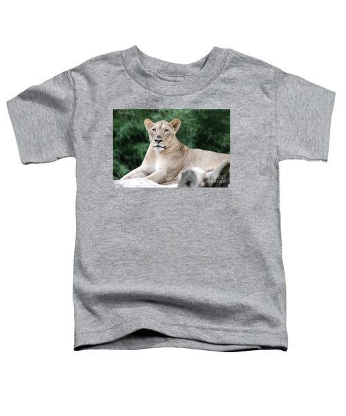Staring Toddler T-Shirt