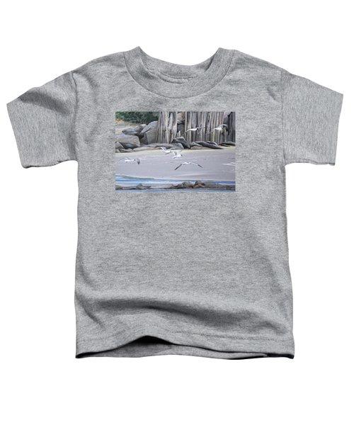 Statio 12 Toddler T-Shirt