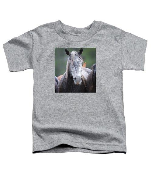 Steel Grey Toddler T-Shirt