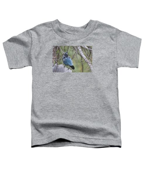 Toddler T-Shirt featuring the photograph Stellar's Jay by Gary Lengyel