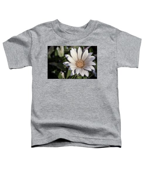 Toddler T-Shirt featuring the photograph Still Dreaming by Alison Frank