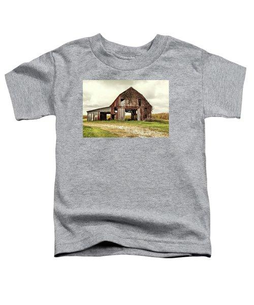 Still Standing Ohio Barn  Toddler T-Shirt