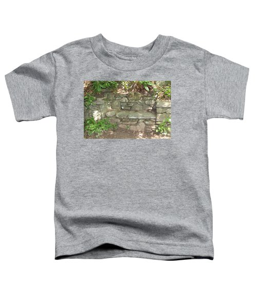 Stone Bench Toddler T-Shirt