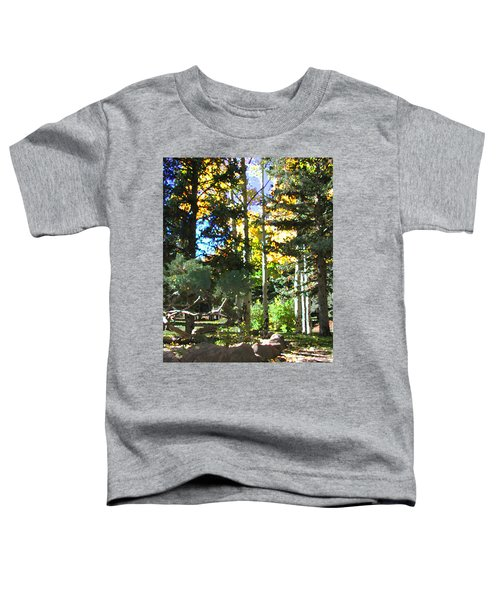 Stone Park Trails Toddler T-Shirt