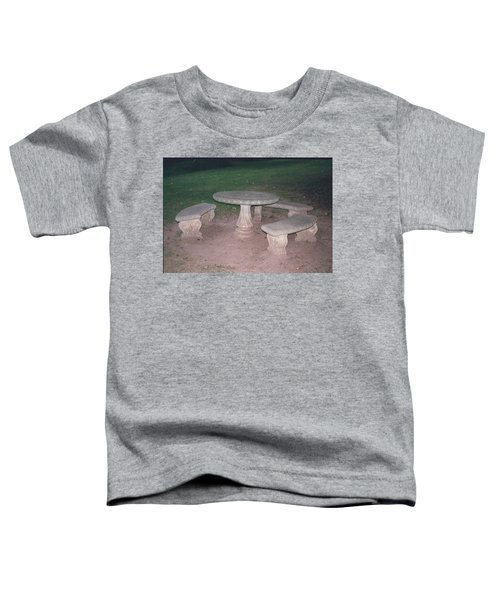 Stone Picnic Table And Benches Toddler T-Shirt